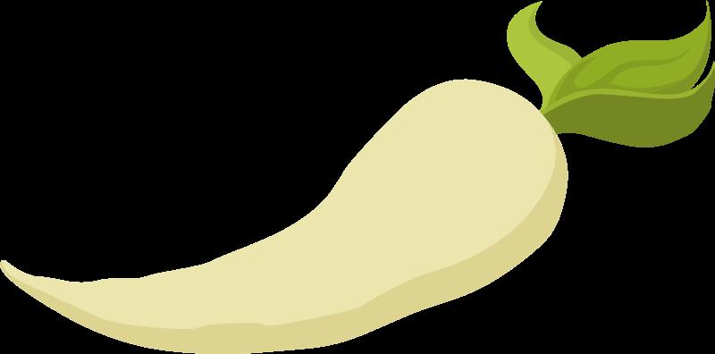 food-parsnip-800px
